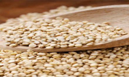7 TOP BENEFITS OF QUINOA – star grain to add more nutrition in Indian diet