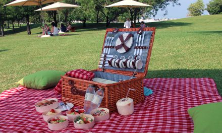 5 great picnic places in Melbourne for summer